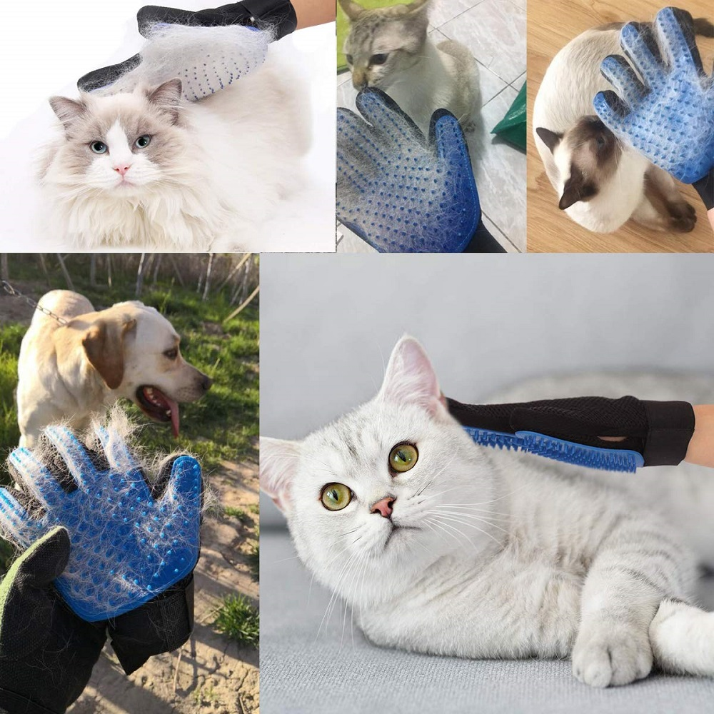 PET GLOVE GROOMING